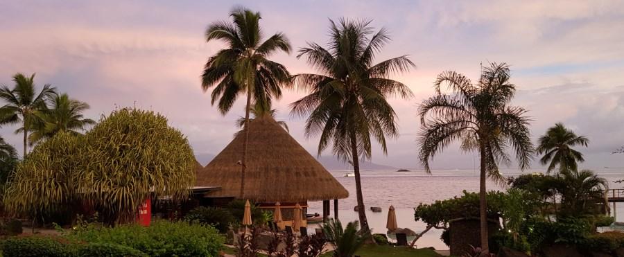Damaris Inbusol Pacifique Tahiti