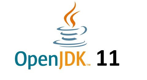 OpenJDK 11